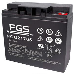 Fiamm/FGS Gel FGG